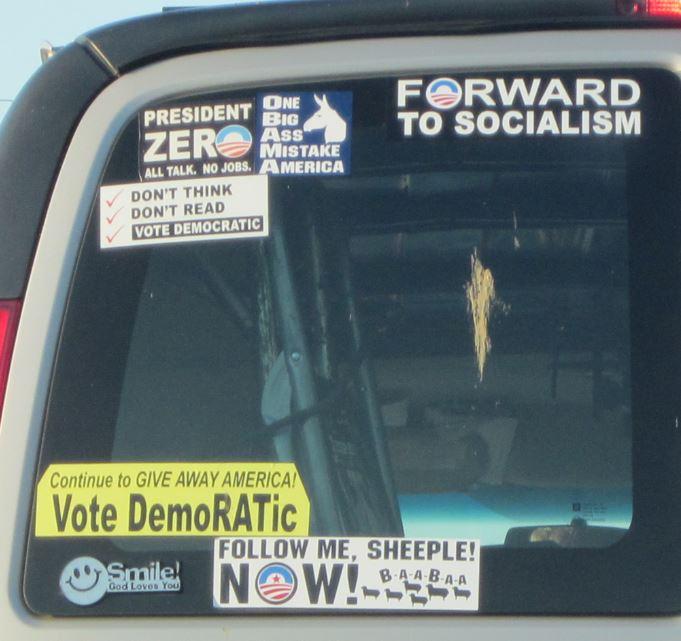 Bumper Sticker - Alexandria VA - Vote Democrat