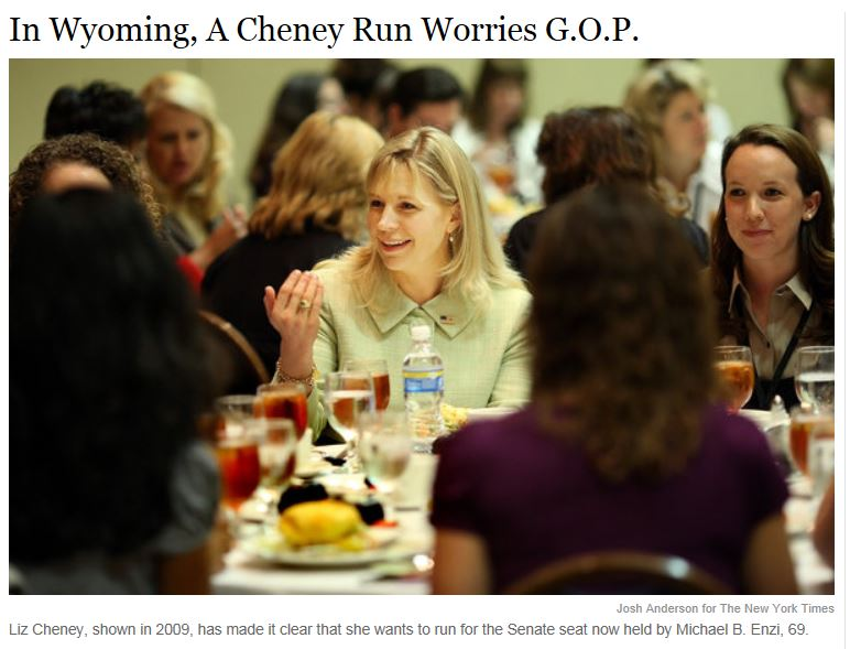 Liz Cheney Run in Wyoming Senate