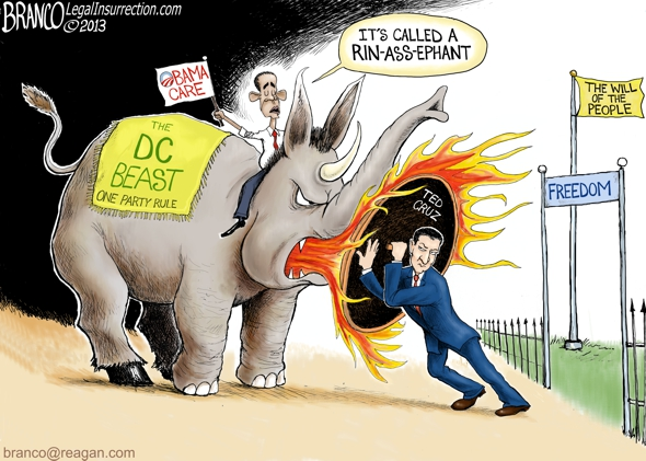 Ted Cruz Obama-Care