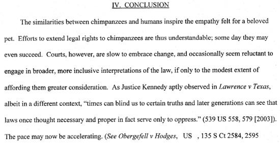 Chimpanzee Freedom Case - Conclusion 1