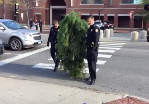 http://www.boston.com/news/local-news/2016/10/25/police-man-dressed-as-tree-arrested-for-blocking-traffic-in-maine