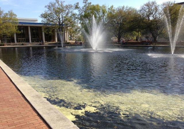 https://commons.wikimedia.org/wiki/File:Thomas_Cooper_Library,_University_of_South_Carolina,_Reflecting_Pond.JPG