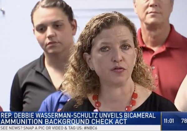 https://www.nbcmiami.com/news/local/South-Florida-Congresswoman-Introduces-Bill-Requiring-Background-Check-on-Gun-Ammunition-Purposes-477941283.html