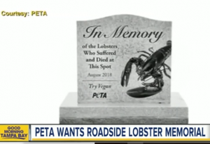 http://www.foxnews.com/food-drink/2018/08/30/peta-wants-maine-officials-to-build-gravestone-in-memory-lobsters-who-died-in-truck-crash.html
