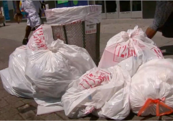 https://abc7ny.com/garbage-in-nyc-rat-problems-new-york-city-rats-trash/6376252/